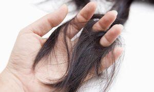 女性の抜け毛が多い理由は男性とは違う?女性の抜け毛の原因とは?のサムネイル画像