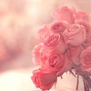 バラ香る♡サムライウーマンプレミアムシャンプーをご紹介! のサムネイル画像